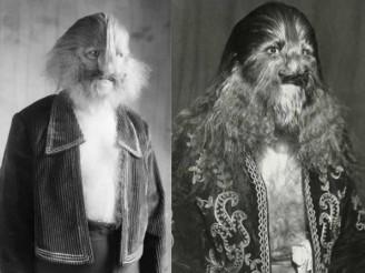 Stephan Bibrowski (1891-1932), un autre des velus célèbres du début du XXe siècle. Sa toison était si flamboyante qu'on l'avait surnommé « Lionel, l'homme à face de lion »